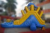 Delphin-Hinterhof-aufblasbares Wasser-Plättchen für Kinder
