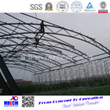低価格の高品質の鉄骨構造の研修会