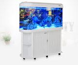 Factortyの直売のアクリルの弾丸ヘッド魚飼育用の水槽