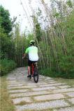 [36ف] [10ه] كهربائيّة درّاجة [لي] أيون بطارية درّاجة كهربائيّة
