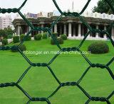 Tela metálica hexagonal colorida/acoplamiento de alambre hexagonal