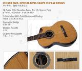 Гитара Cutway шара высокой ранга твердая верхняя электрическая классицистическая