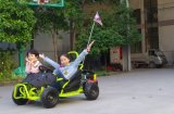 Ce Aprovado 80cc Mini Cross Go Kart Beach Buggy