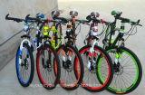 卸売26 Inch マウンテンバイク/山の自転車