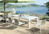 Muebles al aire libre, muebles del patio, muebles del jardín, vector y sillas (DH-862CS6) del jardín