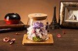Fles van de Wens van de Bloemen van de Constellatie van Ivenran de Verse Lichtgevende voor Creatief Heden en Decoratie