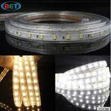 승인되는 5630의 LED 지구 높은 광도 55-56lm W/Ww 50m/Roll/ETL/Ce/RoHS 또는 건물 훈장