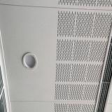 Plafond perforé en aluminium en métal de panneau de modèle spécial avec la qualité de prix usine