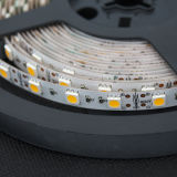 5050 tiras 12V da luz do diodo emissor de luz agora impermeáveis