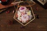형식 100% 생일 선물을%s 자연적인 실제적인 로즈 꽃 상자