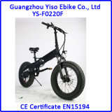 20 Inch Hidden Battery Fat E - Bike with Gasbag - Type Shock Absorber