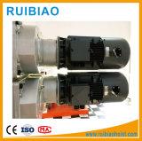 Motore di sollevamento della gru elettrica della costruzione approvato Ce