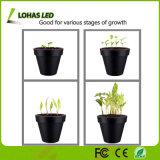 La lampada piena flessibile del morsetto di Gooseneck di spettro 3W si sviluppa chiara per le piante d'appartamento