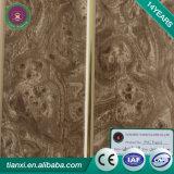 中国の実用的で装飾的な文書の内部壁パネルの天井材料