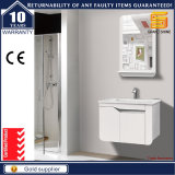 Unidade branca da vaidade do banheiro do dissipador dobro da pintura do lustro elevado
