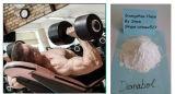 Fábrica que suministra el polvo esteroide de Decanoate del Nandrolone de Deca Durabolin del crecimiento natural del músculo que abulta