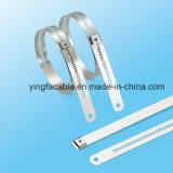 Strichleiter-mehrfache Verschluss-Typ Edelstahl-Kleber-überzogener Kabelbinder