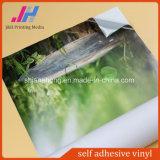 Grauer Kleber entfernbares selbstklebendes Vinyl auf perforiertem Fenster-Vinyl