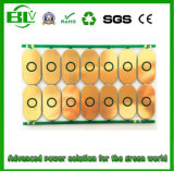 2s 8.4V Li-Ionen Li-Polymeer Raad van PCB van de Lader van de Batterij PCBA/PCB/PCM van batterijkabels de Lichte