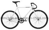 700c 최신 판매 싼 단 하나 속도 조정 기어 자전거는 Sy-Fx70014를 자전거를 탄다