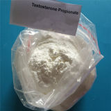 Chemisches injizierbares Steroid-Testosteron-Propionat für gesunde Karosserien-Eignung