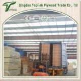 compensato commerciale operato di Okoume di memoria del legno duro del pioppo 5-Ply