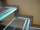 Escalera anti flotante del vidrio de la pisada de escalera del resbalón de la escalera de la luz del LED