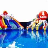 Parque inflável personalizado gigante da água da classe comercial para o verão (CY-M2760)