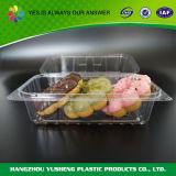 Conteneur articulé par gâteau en plastique remplaçable