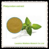 4:1 del polvo del extracto de la raíz de la flor de globo/del extracto de Platycodon Grandiflorum