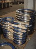 材料A182 F55の熱い造られたデュプレックスステンレス鋼のフランジ