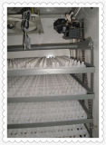 Hhd Cer-anerkannter automatischer elektrischer 880 Huhn-Ei-Inkubator