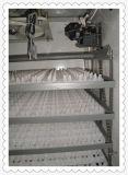 Яичек цыпленка Ce Hhd Approved автоматический электрический инкубатор 880