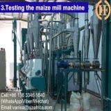 トウモロコシの製造所の加工ライン(6TYGH)