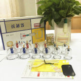 Vakuum Cupping Therapy Device mit Competitive Price