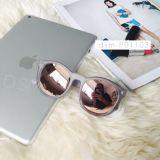 Brille-Plastikrahmensun-Gläser mit heißer Art