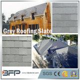 Type différent de forme de diamant de forme de ventilateur pour la tuile de toit d'ardoise de toiture