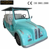 Automobile convertibile elettrica di 8 Seaters
