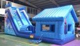 Glissières gonflables, glissières de piscine, glissière d'eau gonflable géante pour l'adulte