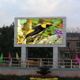 Écran de publicité polychrome extérieur de l'Afficheur LED P10