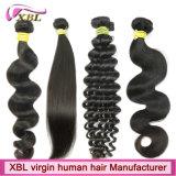 Extensions brésiliennes de cheveux humains de Vierge de vente en gros d'usine de cheveux de Xbl