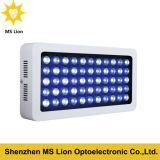 Luz blanca y azul vendedora caliente del acuario del LED para el filón coralino
