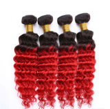 """バージンの毛のOmbreの24 """"ブラジルの深い巻き毛の織り方3束"""