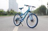 최신 판매 Bicycles 싼 도시 자전거 도로 자전거 숙녀