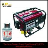 싼 Price 중국 2.5kw Elemax CNG Generator (ZH3500CNEM)