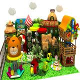 Tema del espacio del equipo de madera suave del patio