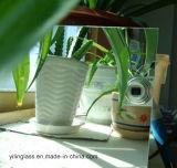 Raum-Floatglas der Qualitäts-3.2