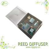 Home Customized Fragrance Vaporizer Aroma Reed Diffuser, Perfume Volatilization Gift Set