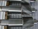 Arbre 1045 de turbine de vis sans fin d'acier de forge