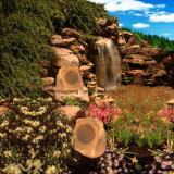 Altoparlanti resistenti all'intemperie della roccia dell'argilla friabile del Brown